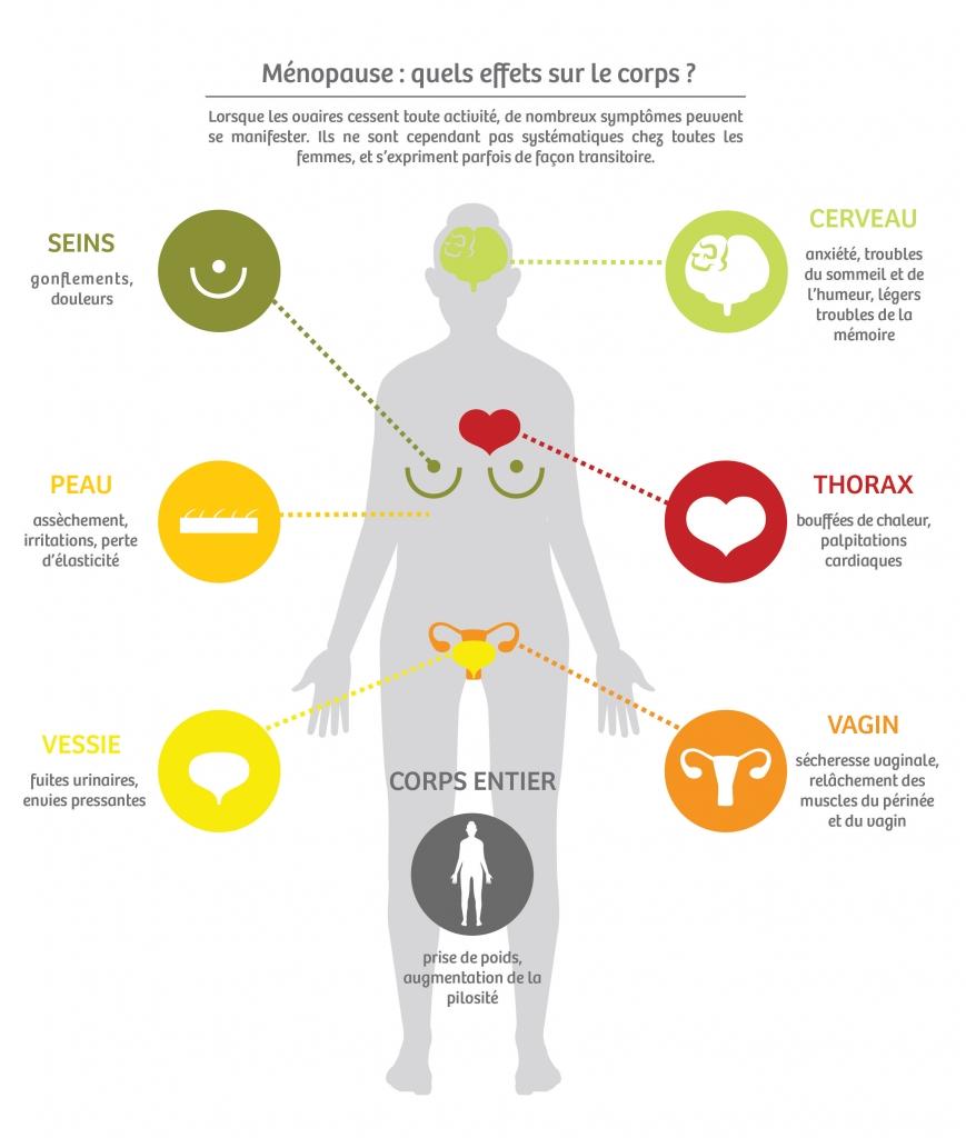 Lorsque les ovaires cessent toute activité, de nombreux symptômes peuvent se manifester dans tout le corps. (Cerveau, peau, thorax, seins, vessie, vagin)
